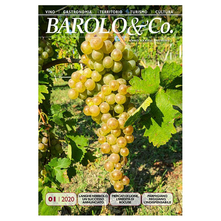 Barolo & Co. vol. 1/2020